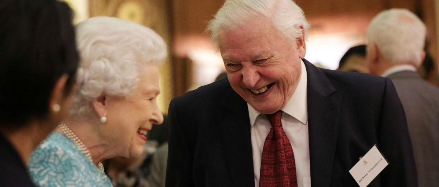 The Queen's Commonwealth Canopy reception held at Buckingham Palace